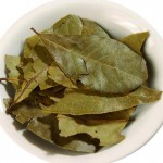Bay leaves in traditional medicine. Лавровый лист в народной медицине