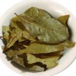 Bay leaves in traditional medicine. Лавровый лист в народной медицине
